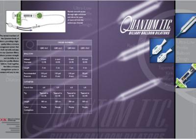 Quantum Brochure